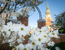 Wake forest university d regular 20180426085009